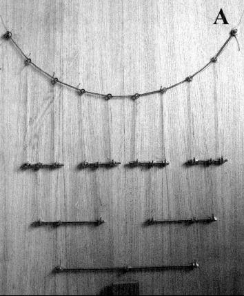 rope_balancing